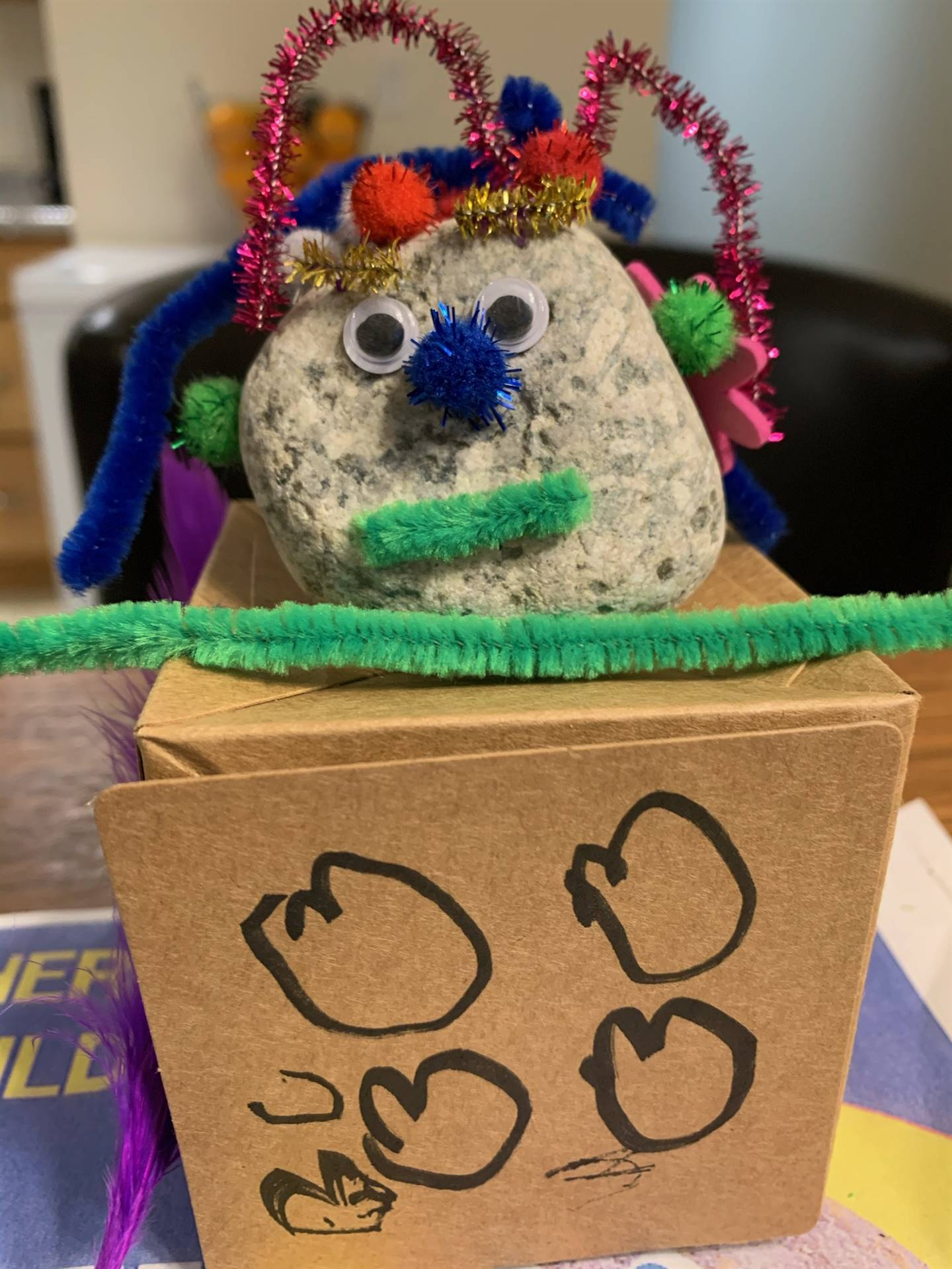 Here we see the pet rock with pipe cleaners and a puff nose.