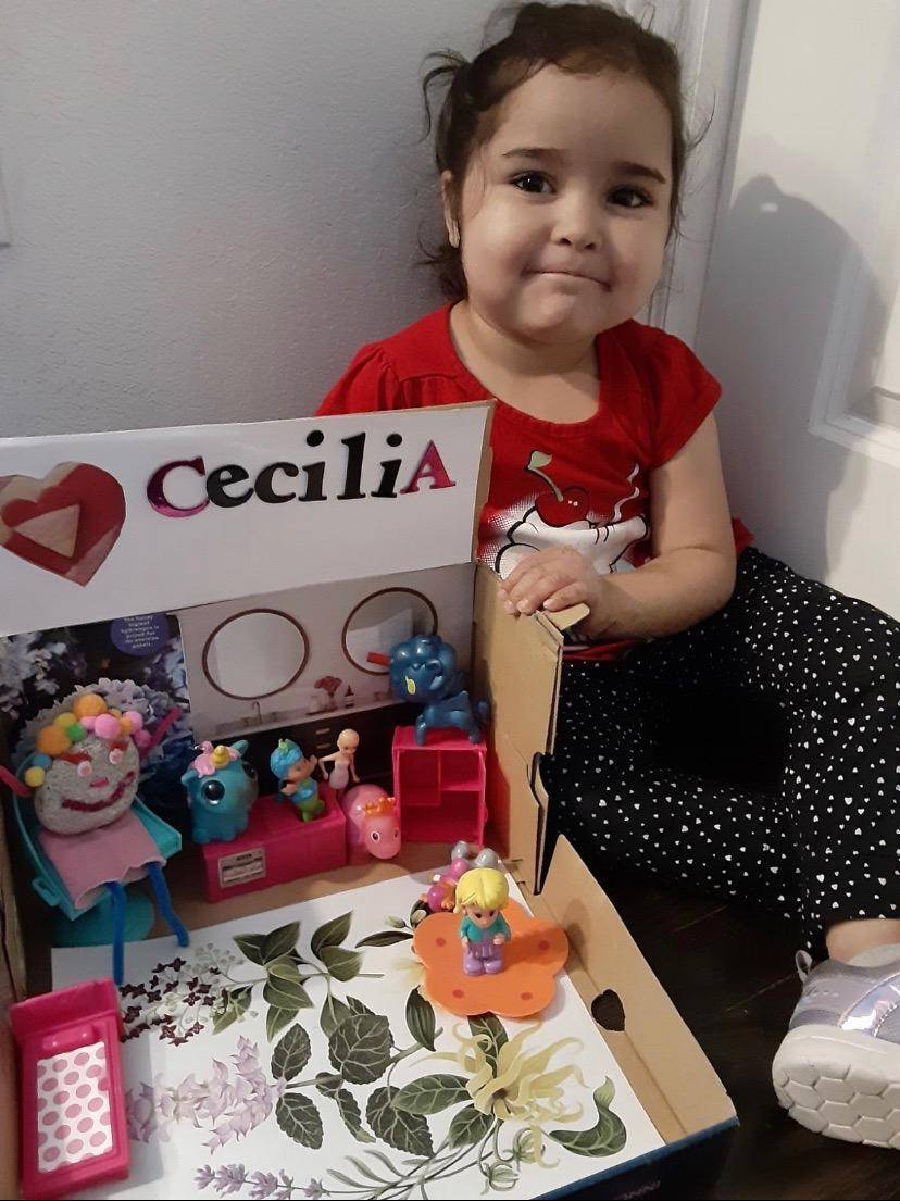 A little girl displays her elaborate pet rock & home.