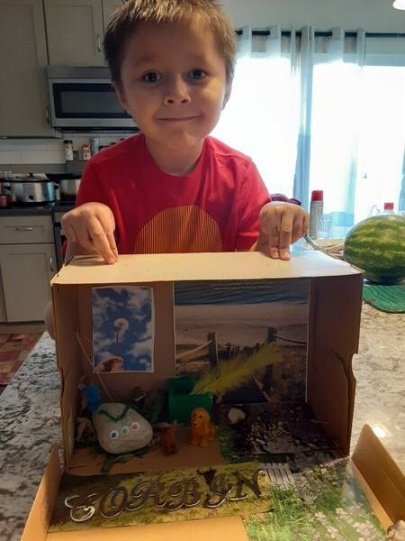 A student shows his elaborate home with his pet rock.