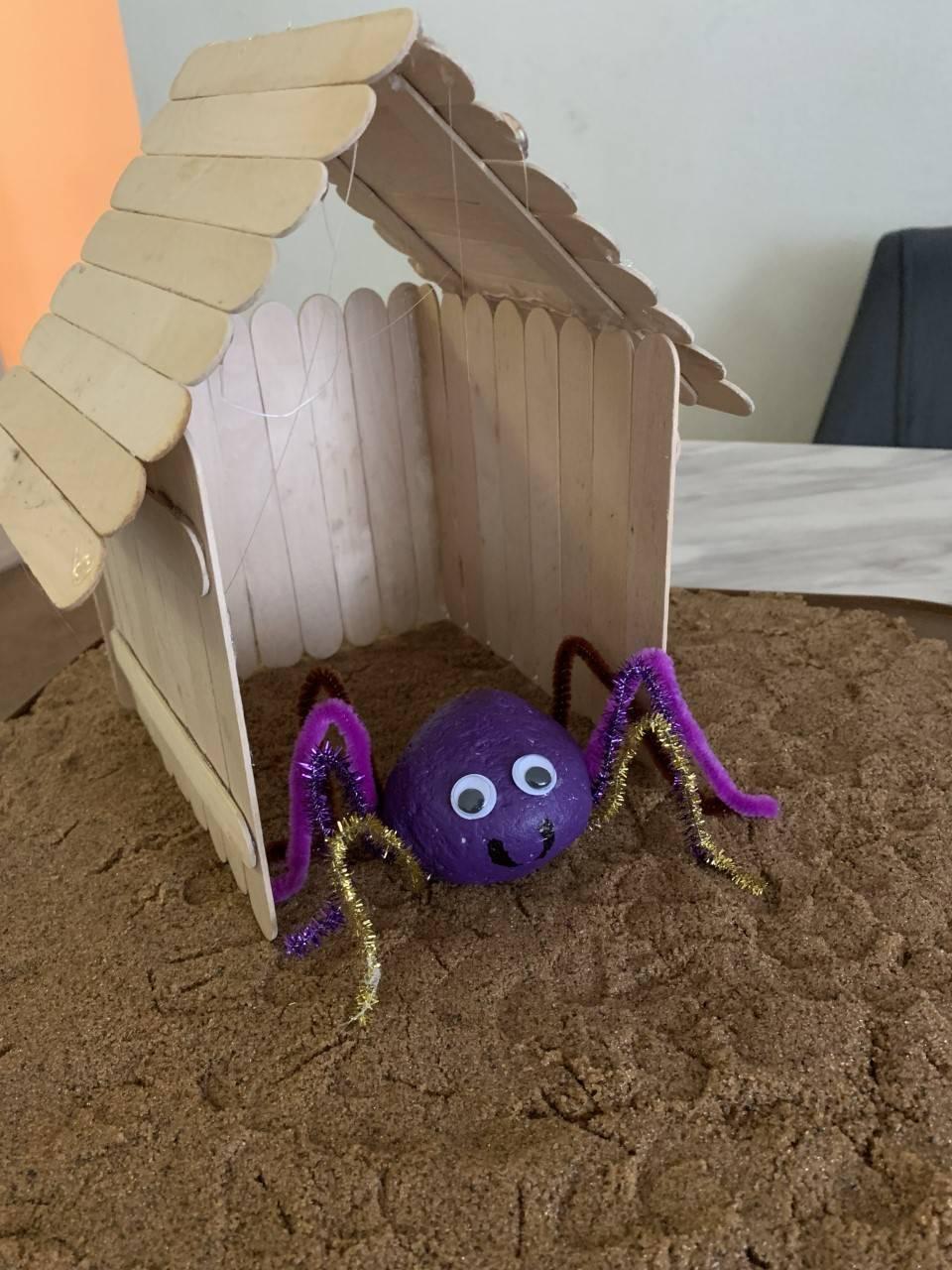 A pet rock sits inside it's house.
